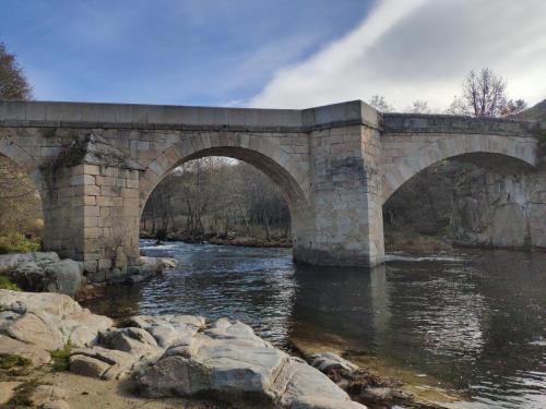 Vista del puente completo desde la vena